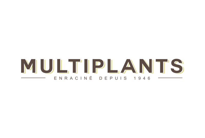 Multiplants